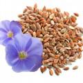 Семя льна применение